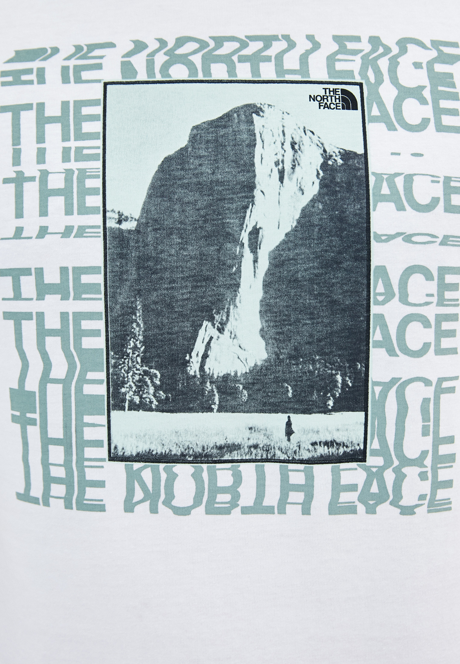 Футболка The North Face (Норт Фейс) TA55TN: изображение 3