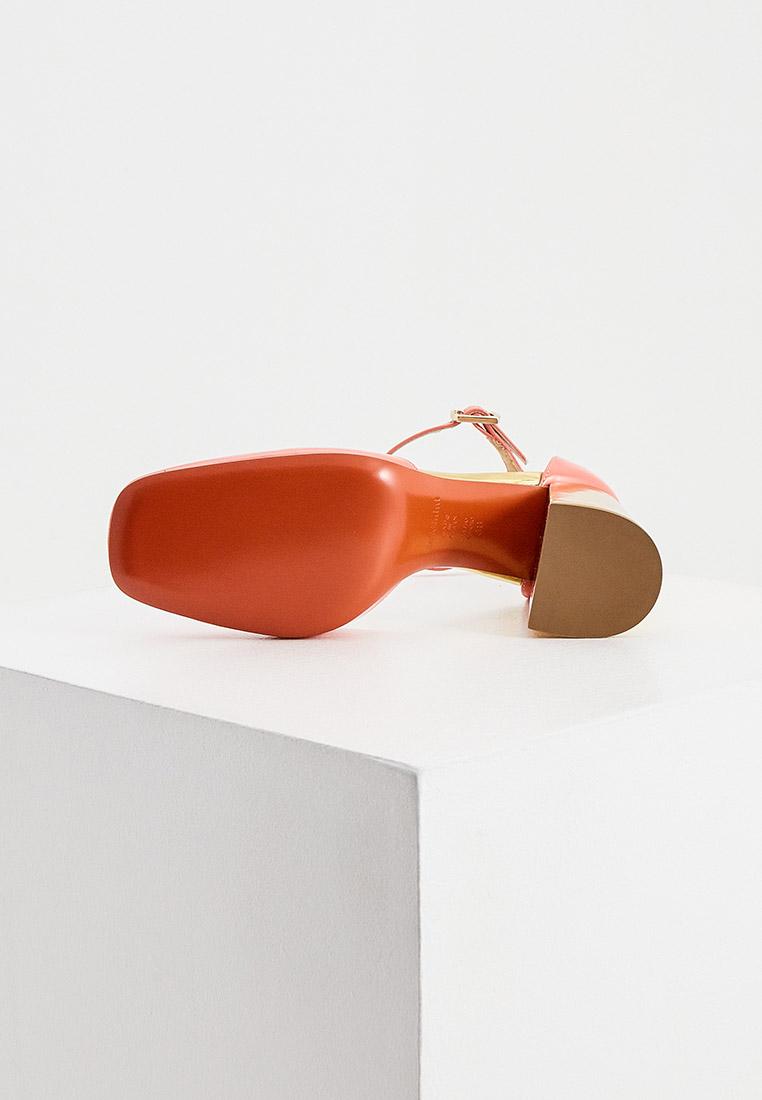 Женские туфли Baldinini (Балдинини) 158021P91U2NICEBBOR: изображение 3