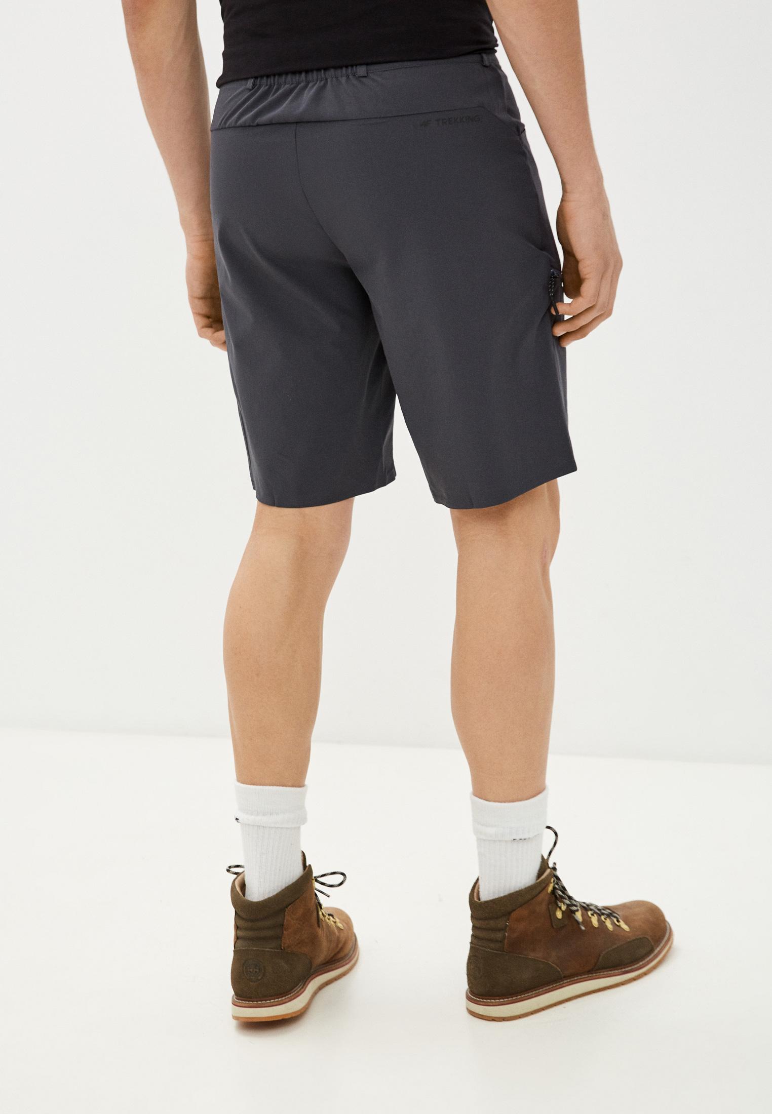 Мужские спортивные шорты 4F (4Ф) H4L21-SKMF060: изображение 3