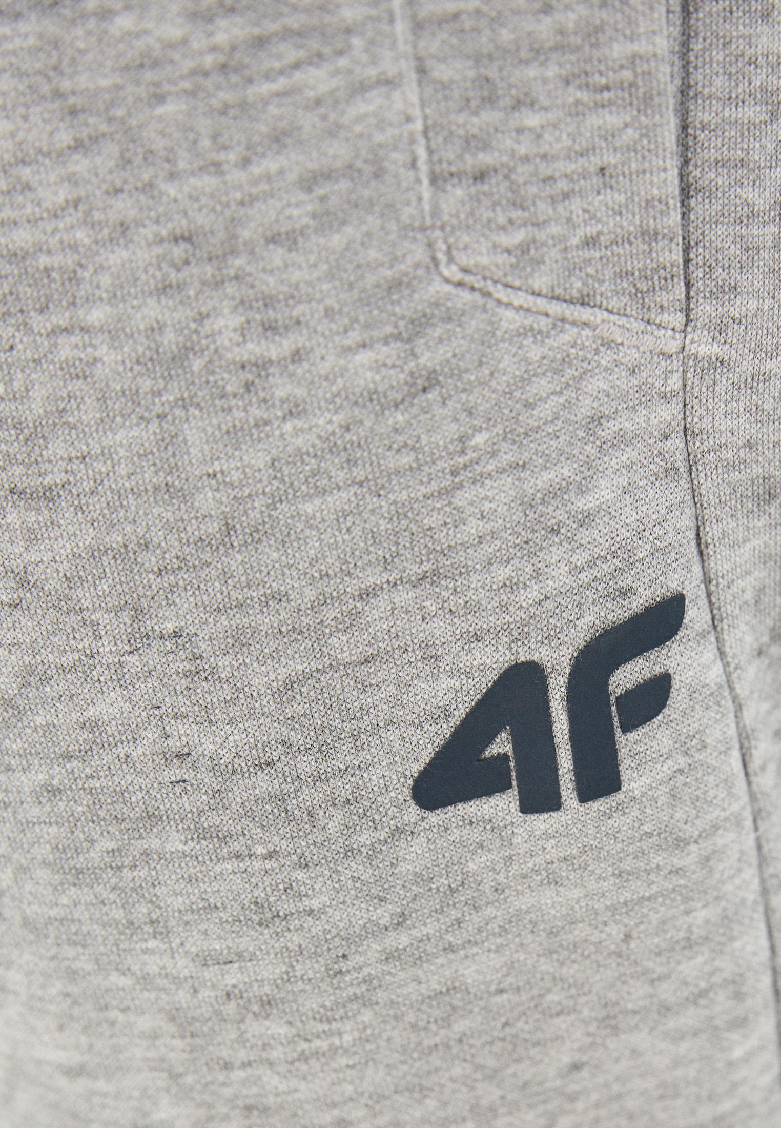 4F H4L21-SPMD010: изображение 4