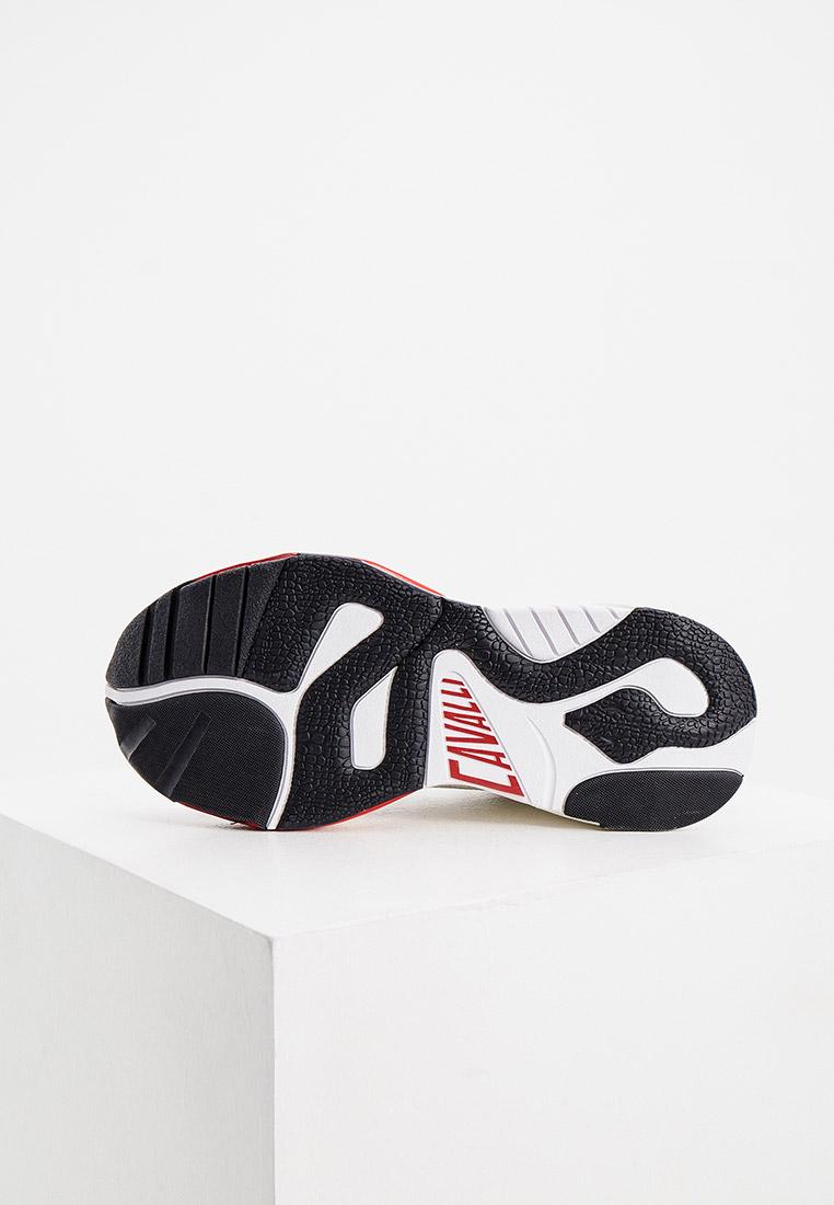 Мужские кроссовки Just Cavalli (Джаст Кавалли) S08WS0138 P2582: изображение 5