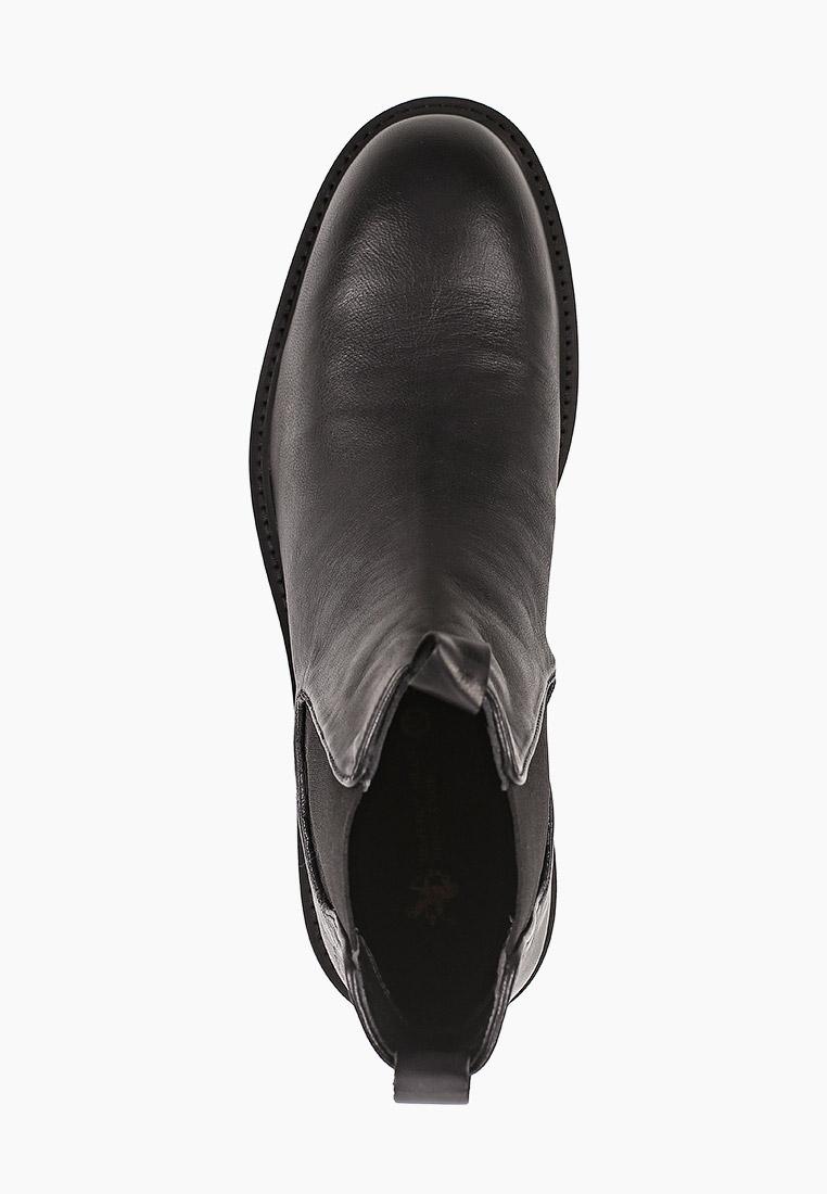 Мужские ботинки Beverly Hills Polo Club W20-AHM568: изображение 4