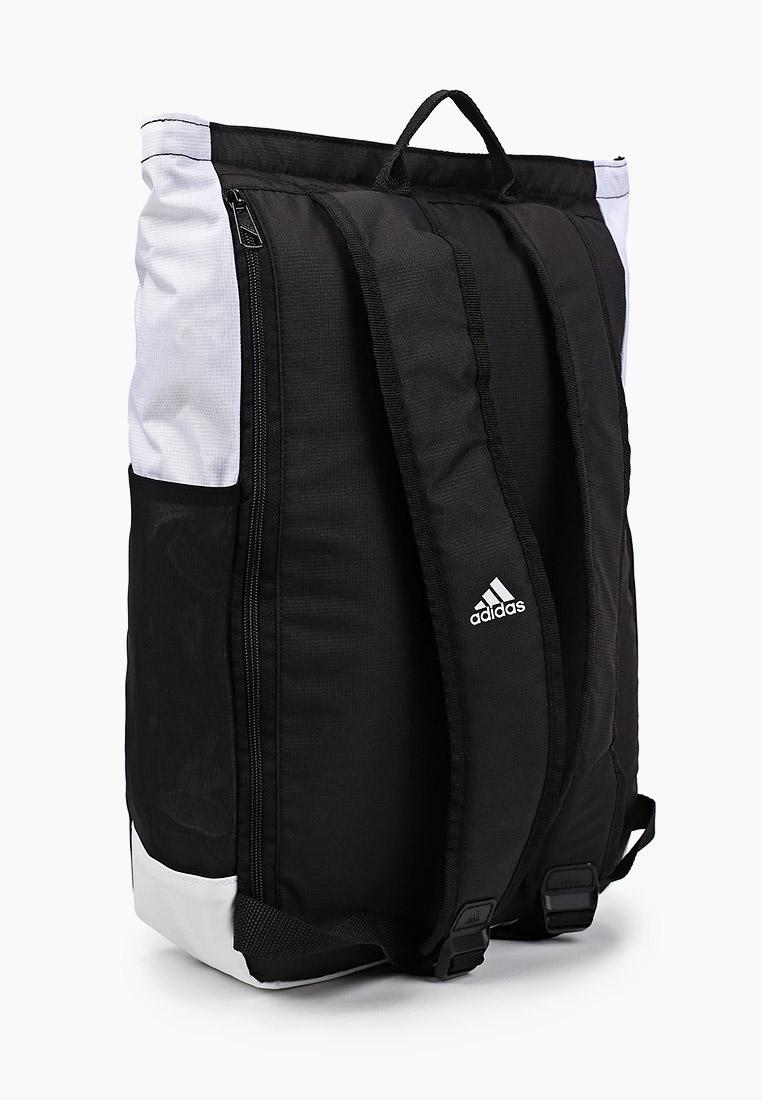 Adidas (Адидас) GU0104: изображение 2
