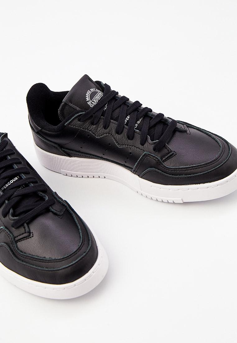 Мужские кеды Adidas Originals (Адидас Ориджиналс) EE6038: изображение 3