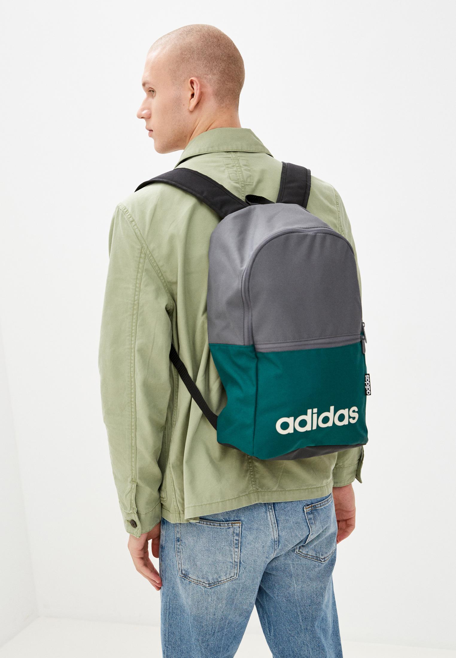 Adidas (Адидас) H34829: изображение 4