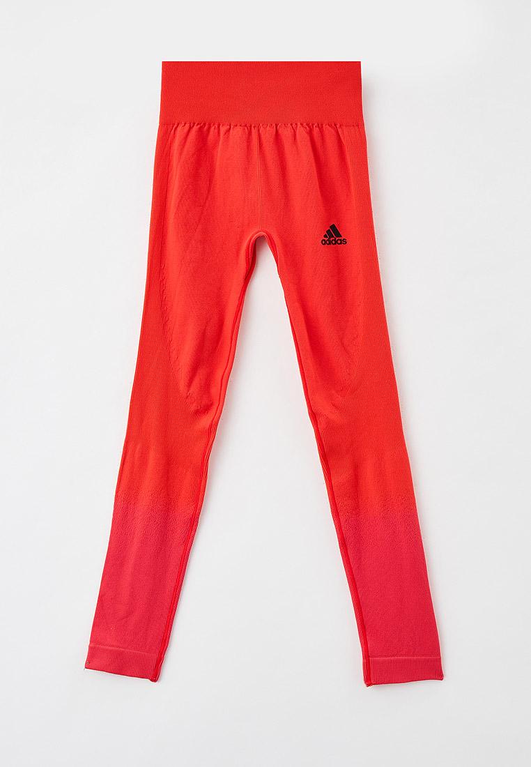 Леггинсы Adidas (Адидас) GV1289: изображение 1