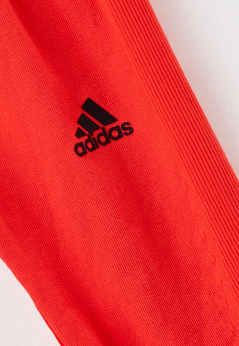 Леггинсы Adidas (Адидас) GV1289: изображение 3