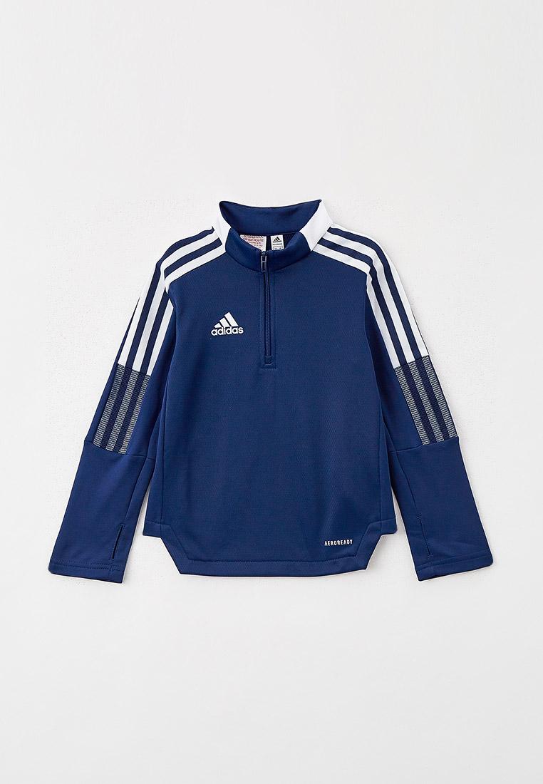 Олимпийка Adidas (Адидас) GK9672