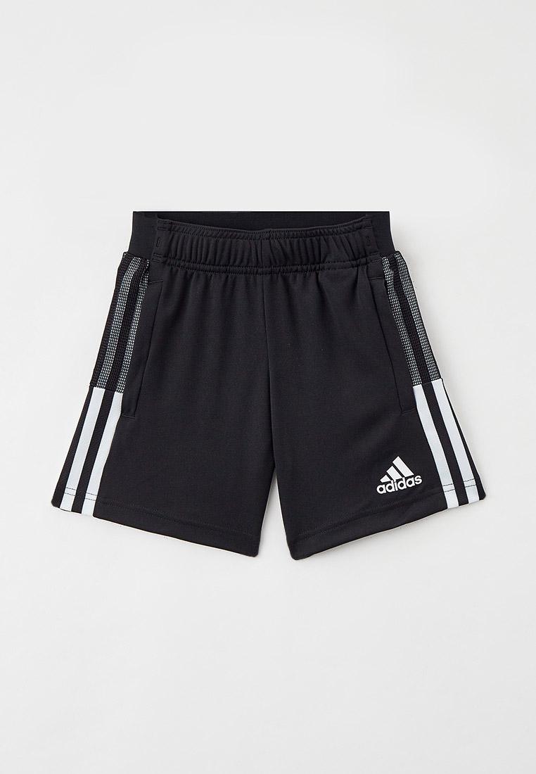 Шорты для мальчиков Adidas (Адидас) GN2161: изображение 1