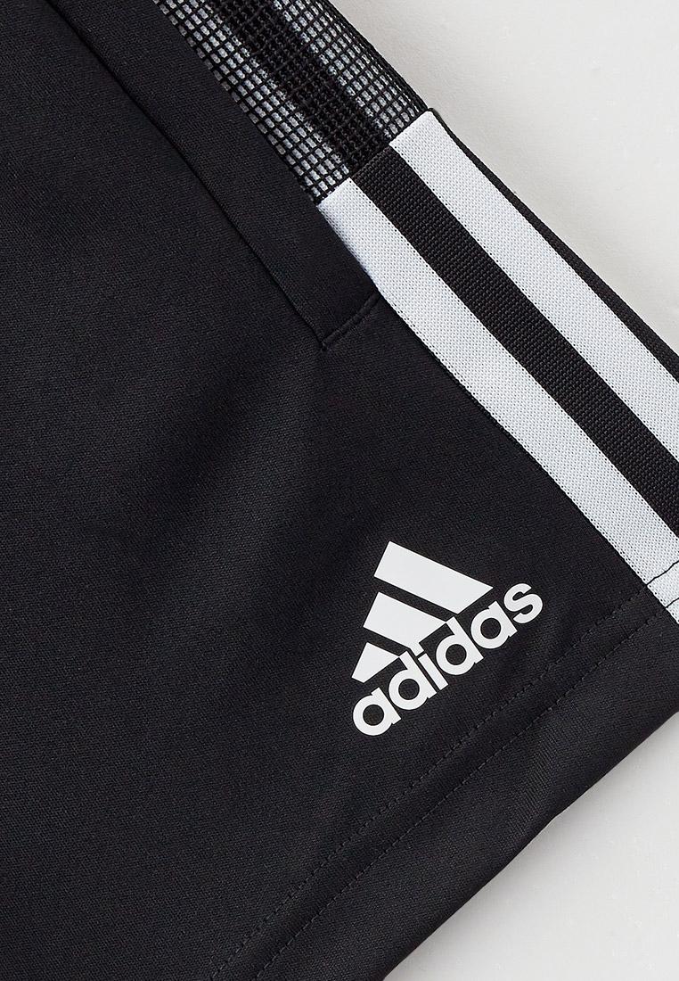 Шорты для мальчиков Adidas (Адидас) GN2161: изображение 3