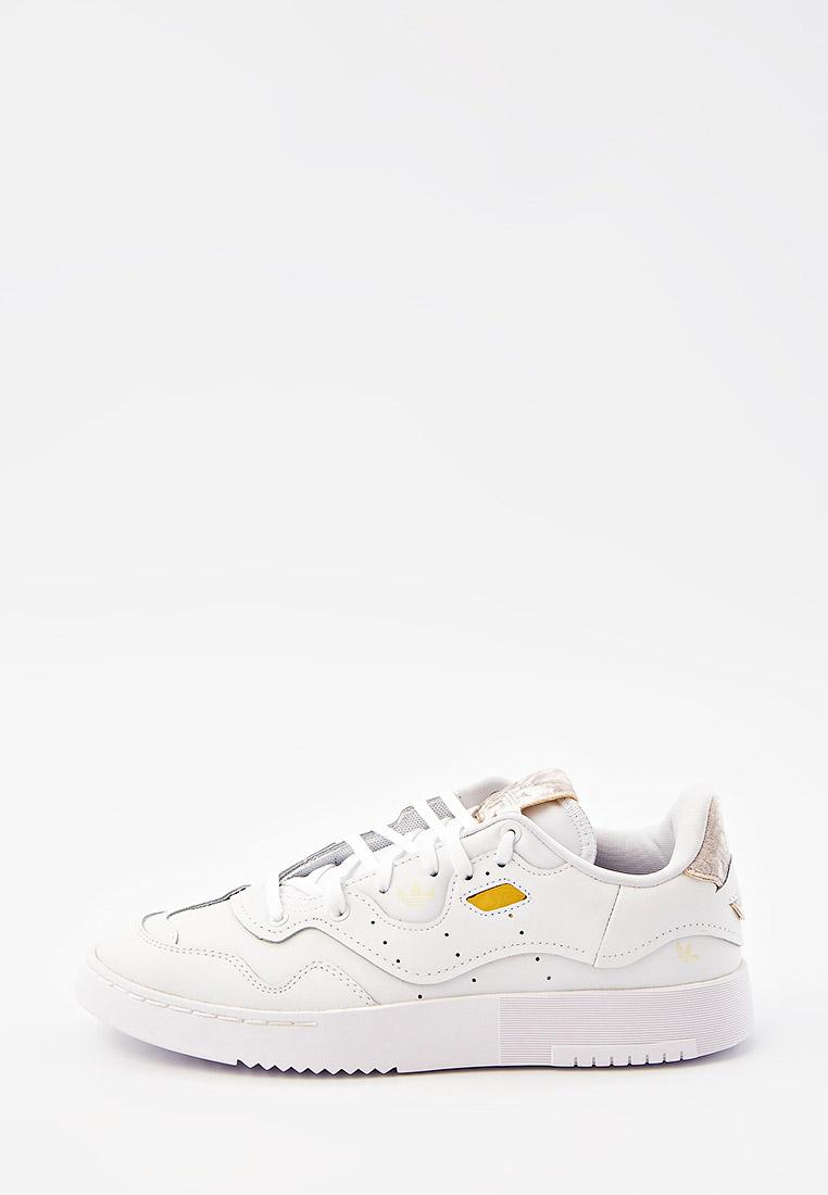 Женские кеды Adidas Originals (Адидас Ориджиналс) GW0193