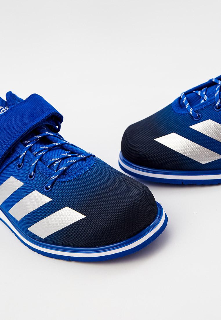 Мужские кроссовки Adidas (Адидас) FZ5304: изображение 4