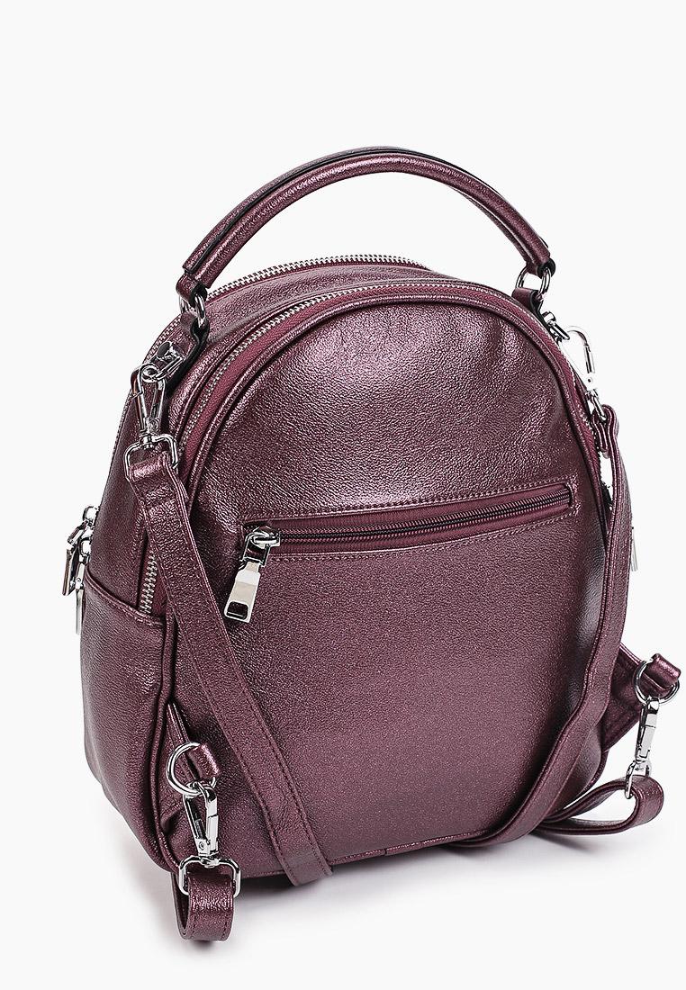 Городской рюкзак Aaquamarina 8005: изображение 2