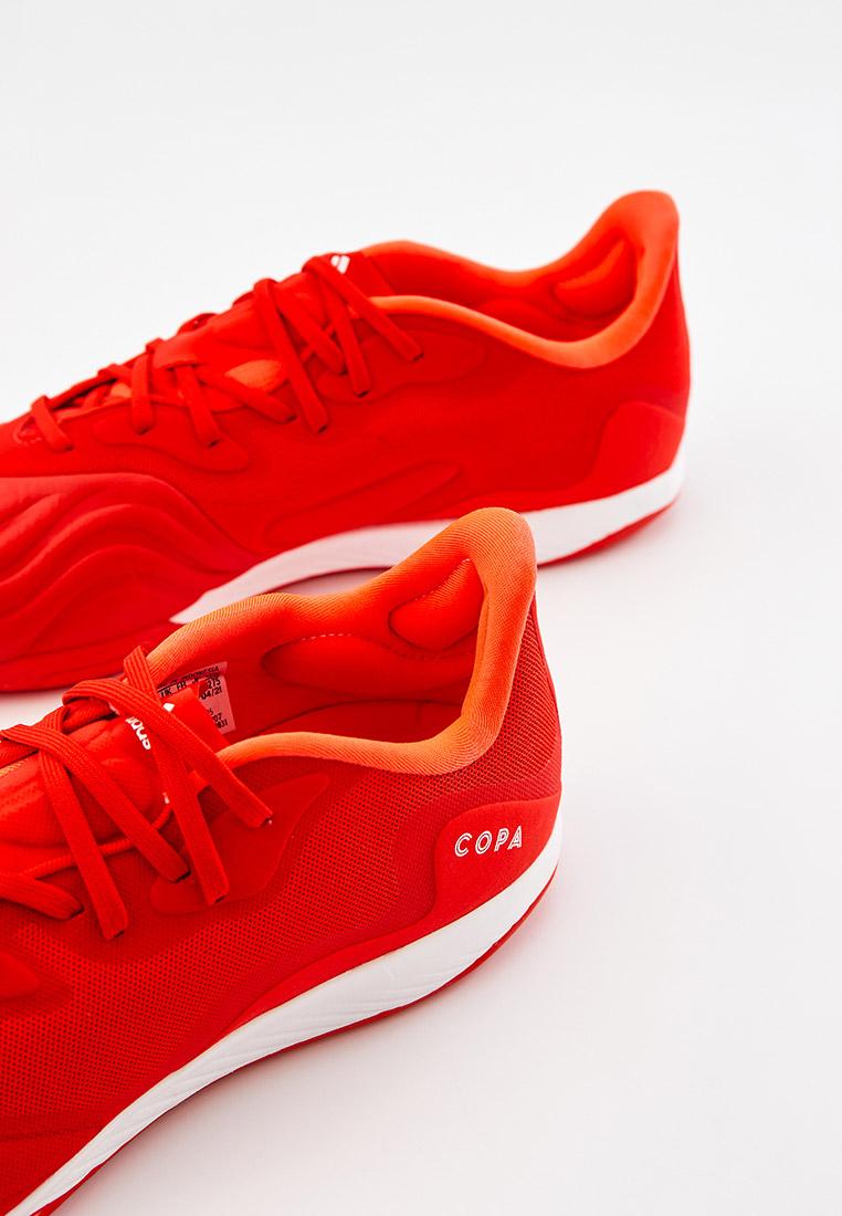 Бутсы Adidas (Адидас) FY6205: изображение 4