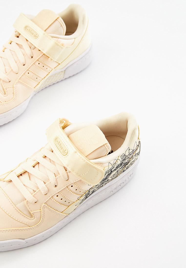 Женские кеды Adidas Originals (Адидас Ориджиналс) GX5074: изображение 3
