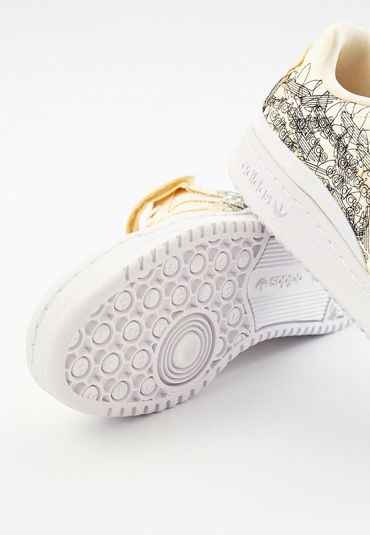 Женские кеды Adidas Originals (Адидас Ориджиналс) GX5074: изображение 5
