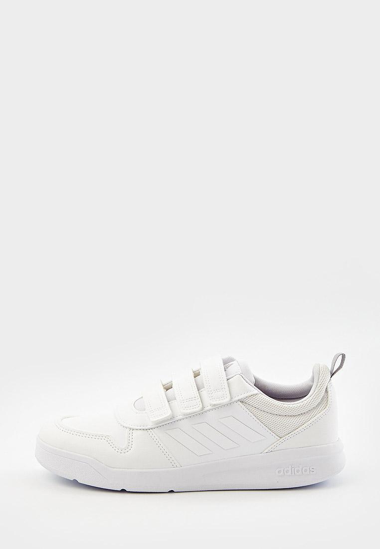 Кеды для мальчиков Adidas (Адидас) S24047: изображение 6