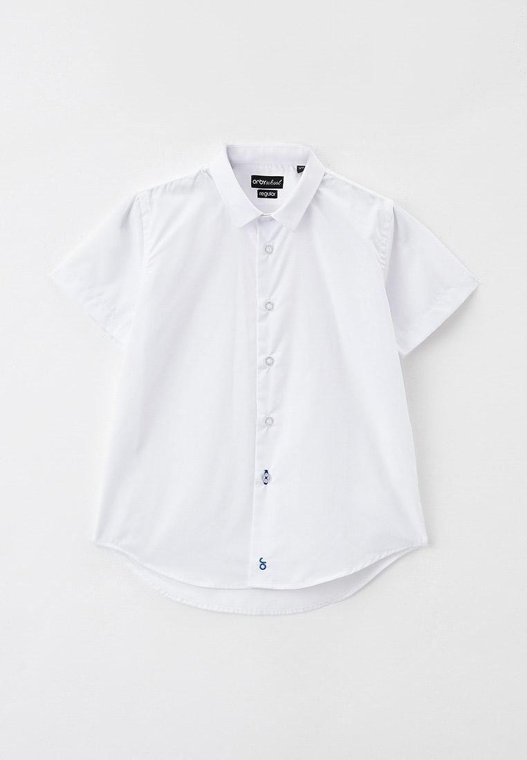Рубашка Orby (Орби) 101282_OLB