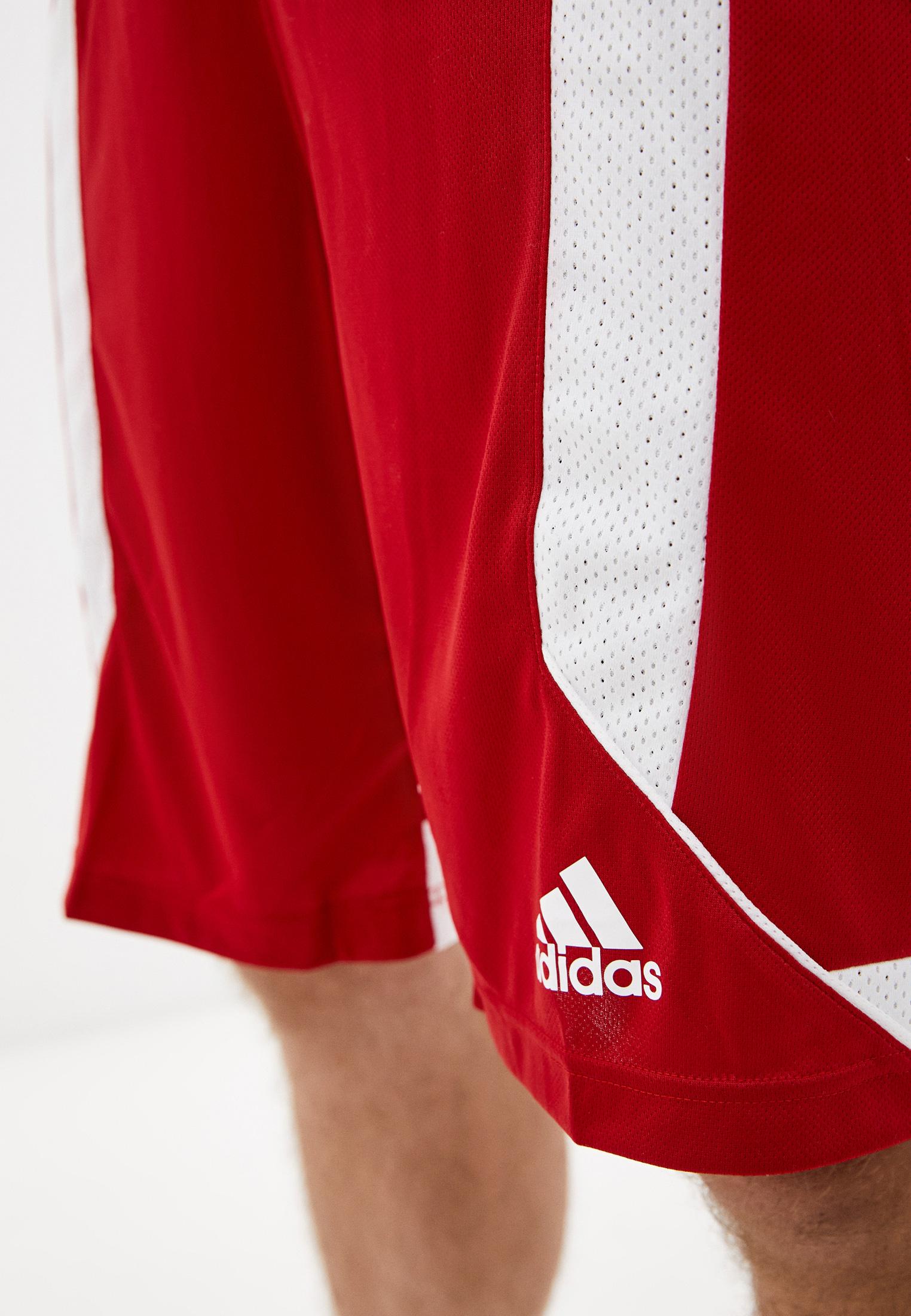 Мужские спортивные шорты Adidas (Адидас) DY7377: изображение 4