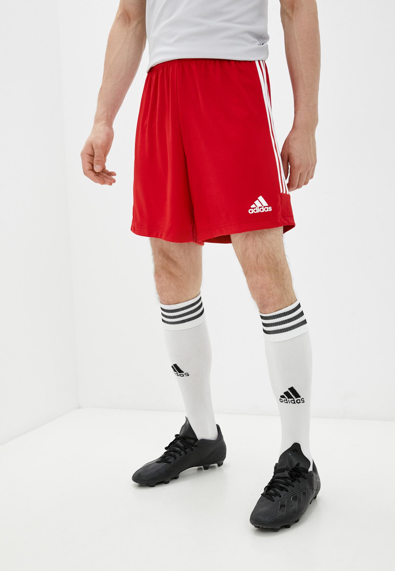 Мужские спортивные шорты Adidas (Адидас) GT8801: изображение 1