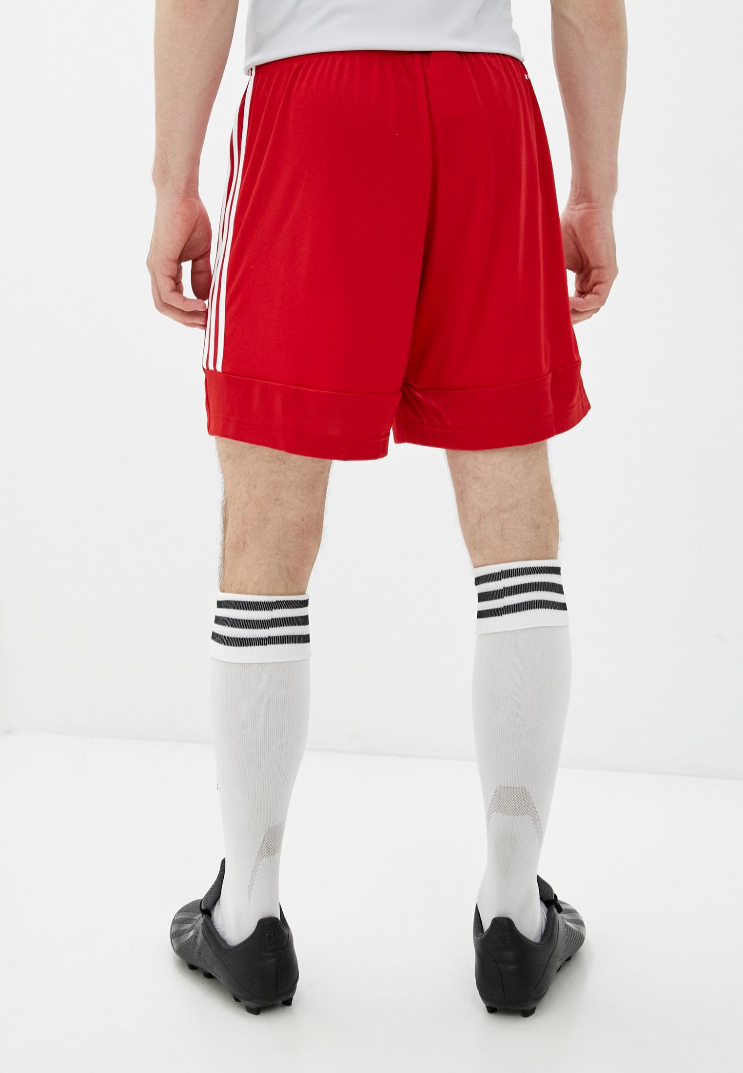 Мужские спортивные шорты Adidas (Адидас) GT8801: изображение 3