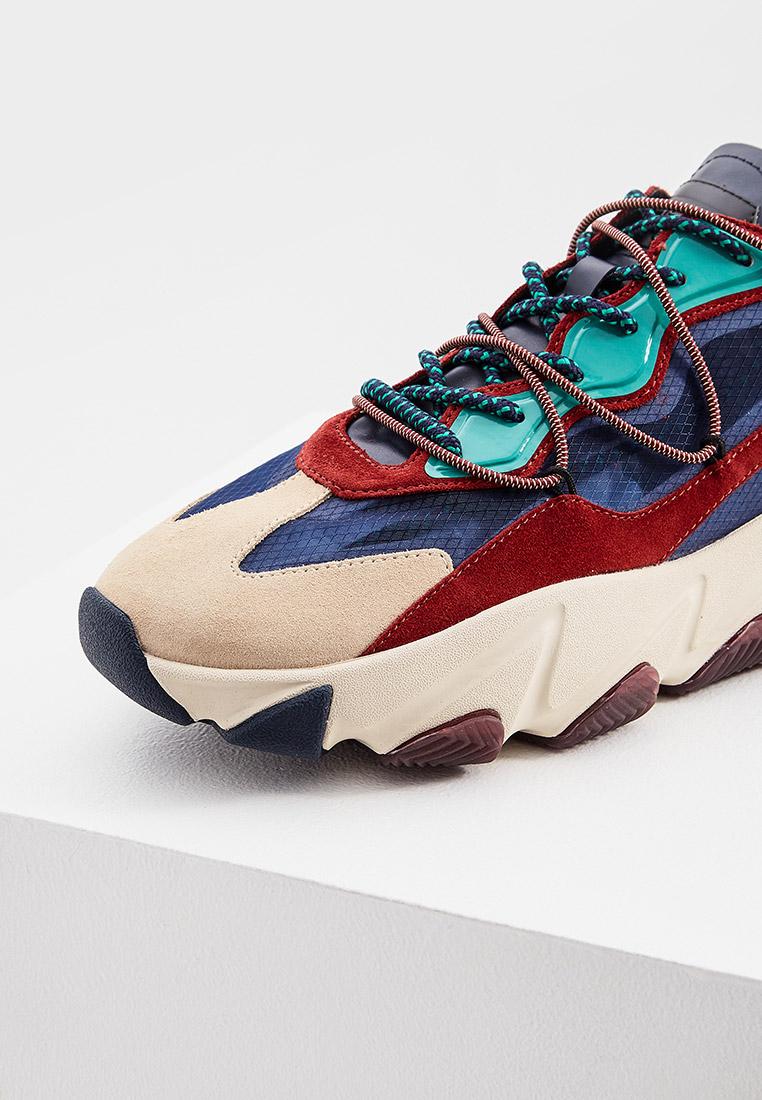 Мужские кроссовки Ash (Аш) 5AH.AH106998.: изображение 4