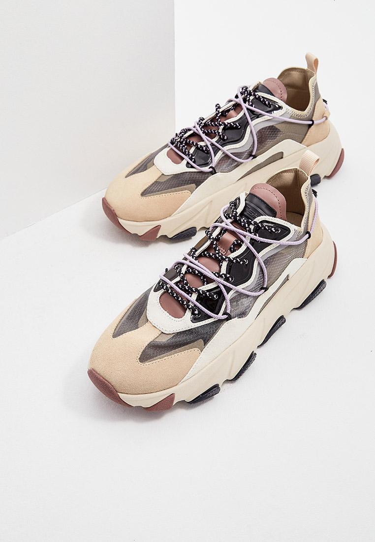 Мужские кроссовки Ash (Аш) 5AH.AH106999.: изображение 5