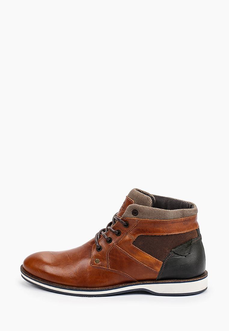 Мужские ботинки Beppi (Беппи) Ботинки Beppi