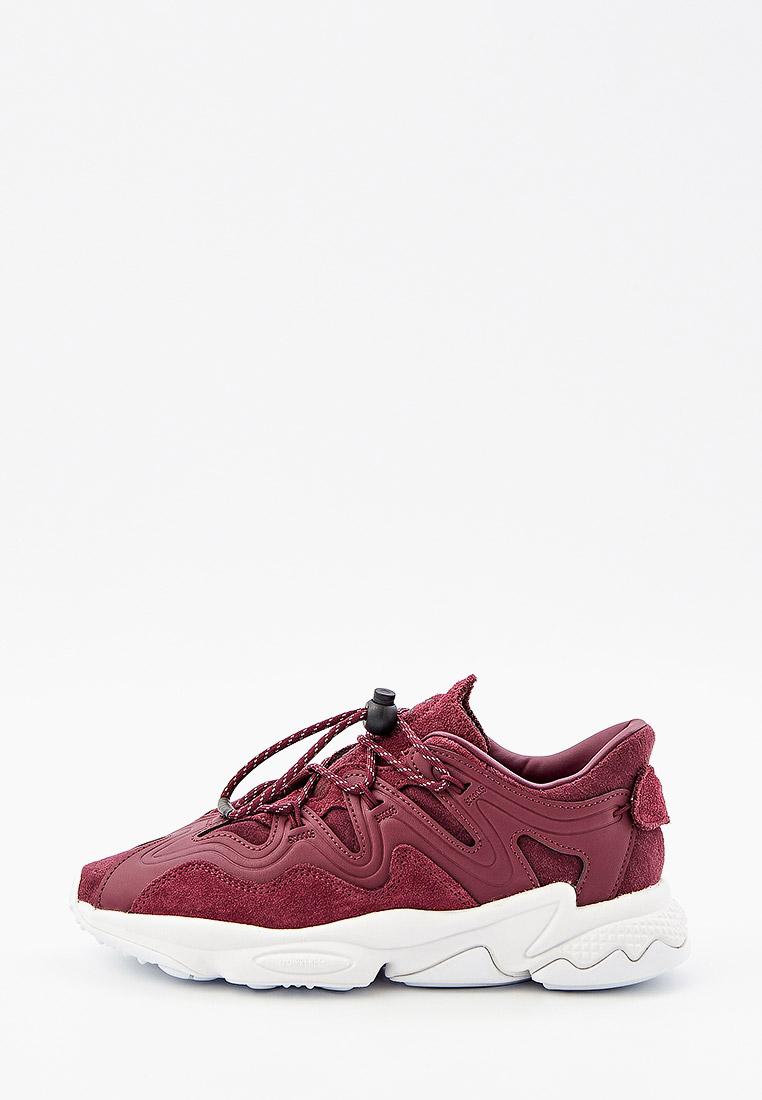 Женские кроссовки Adidas Originals (Адидас Ориджиналс) H01184: изображение 1