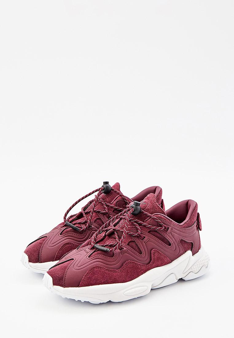 Женские кроссовки Adidas Originals (Адидас Ориджиналс) H01184: изображение 3