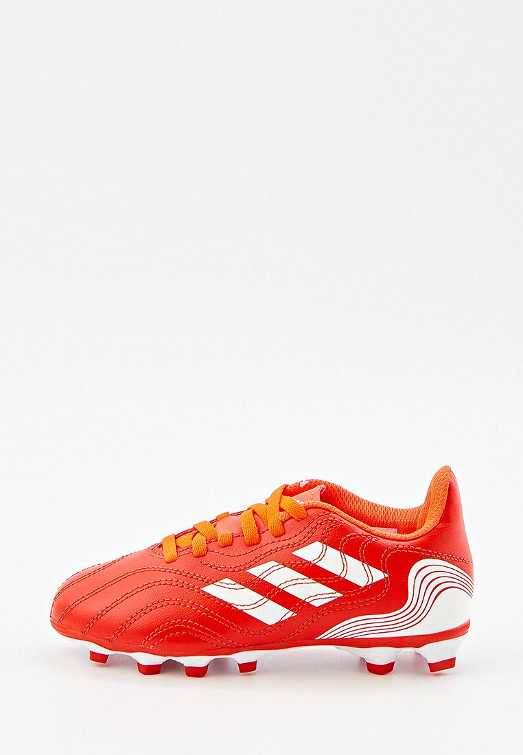 Обувь для мальчиков Adidas (Адидас) FY6168: изображение 1