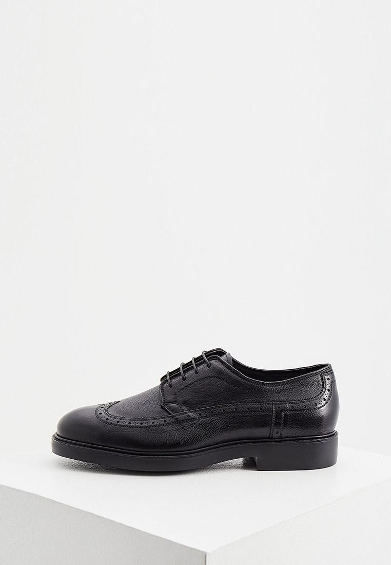 Мужские туфли Fabi (Фаби) Туфли Fabi