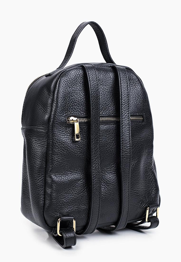 Городской рюкзак BOSCCOLO 5329: изображение 6