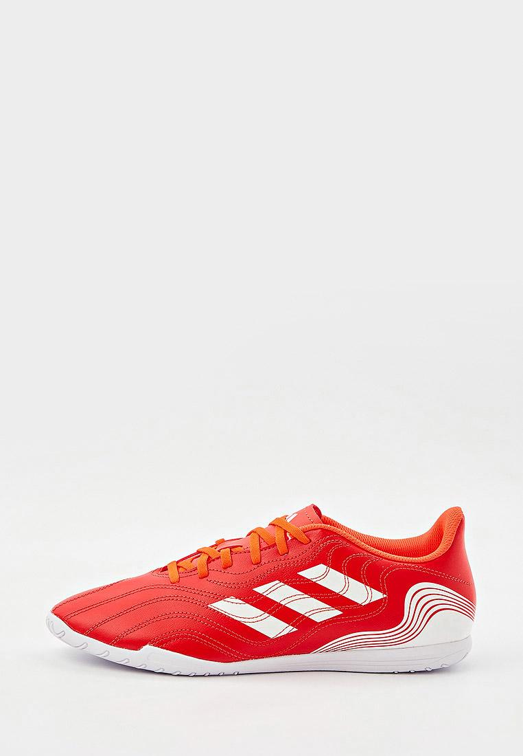 Бутсы Adidas (Адидас) FY6181: изображение 2