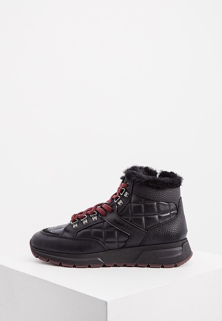 Мужские ботинки Baldinini (Балдинини) U2B880BGNTNENE
