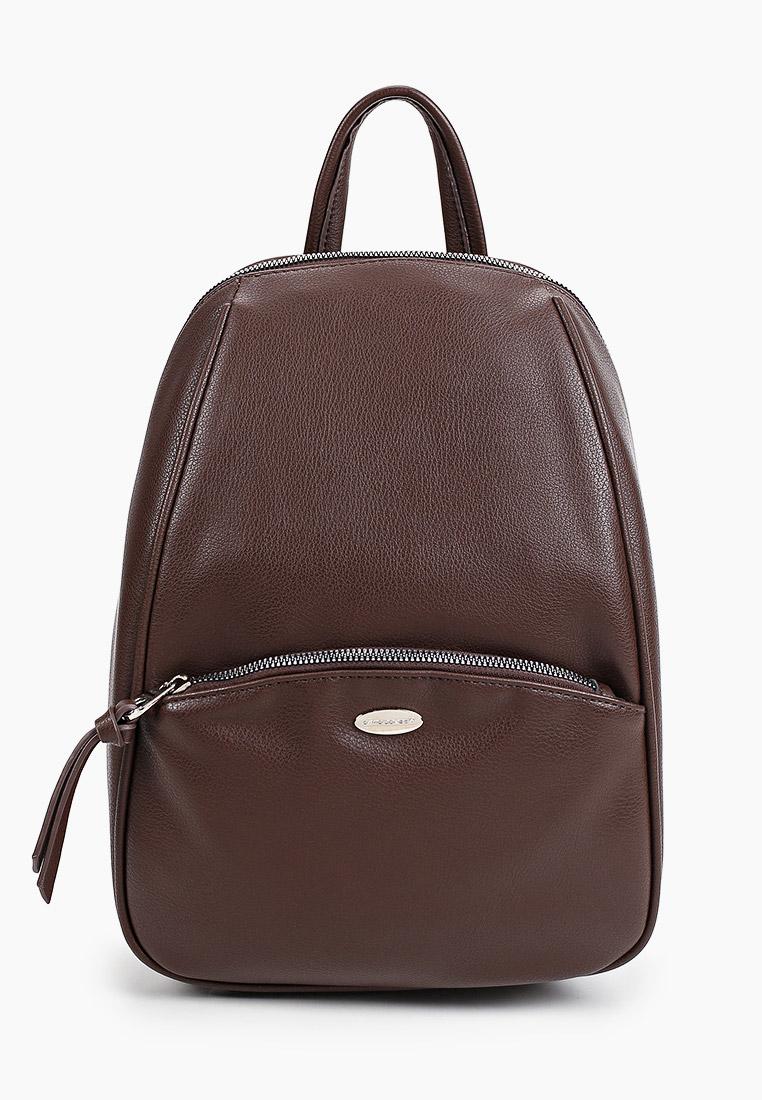 Городской рюкзак David Jones (Дэвид Джонс) CM5604