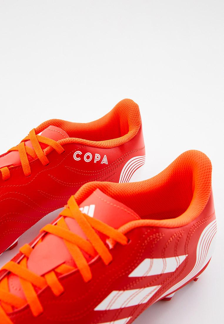 Бутсы Adidas (Адидас) FY6183: изображение 2