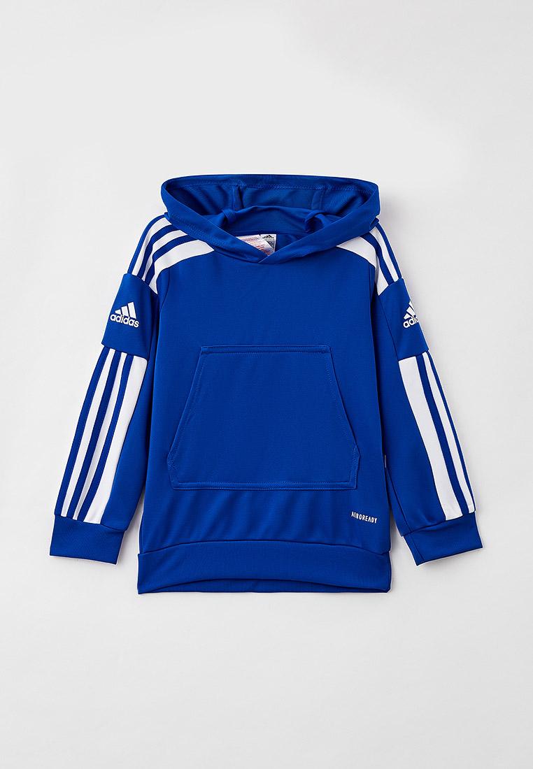 Толстовка Adidas (Адидас) GP6434: изображение 1