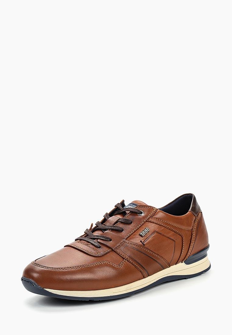 Мужские кроссовки SALAMANDER (Саламандер) 31-56204-07