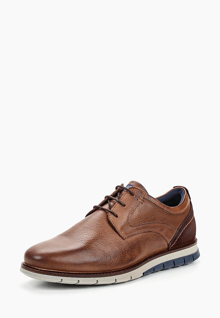 Мужские туфли SALAMANDER (Саламандер) 31-56501-14