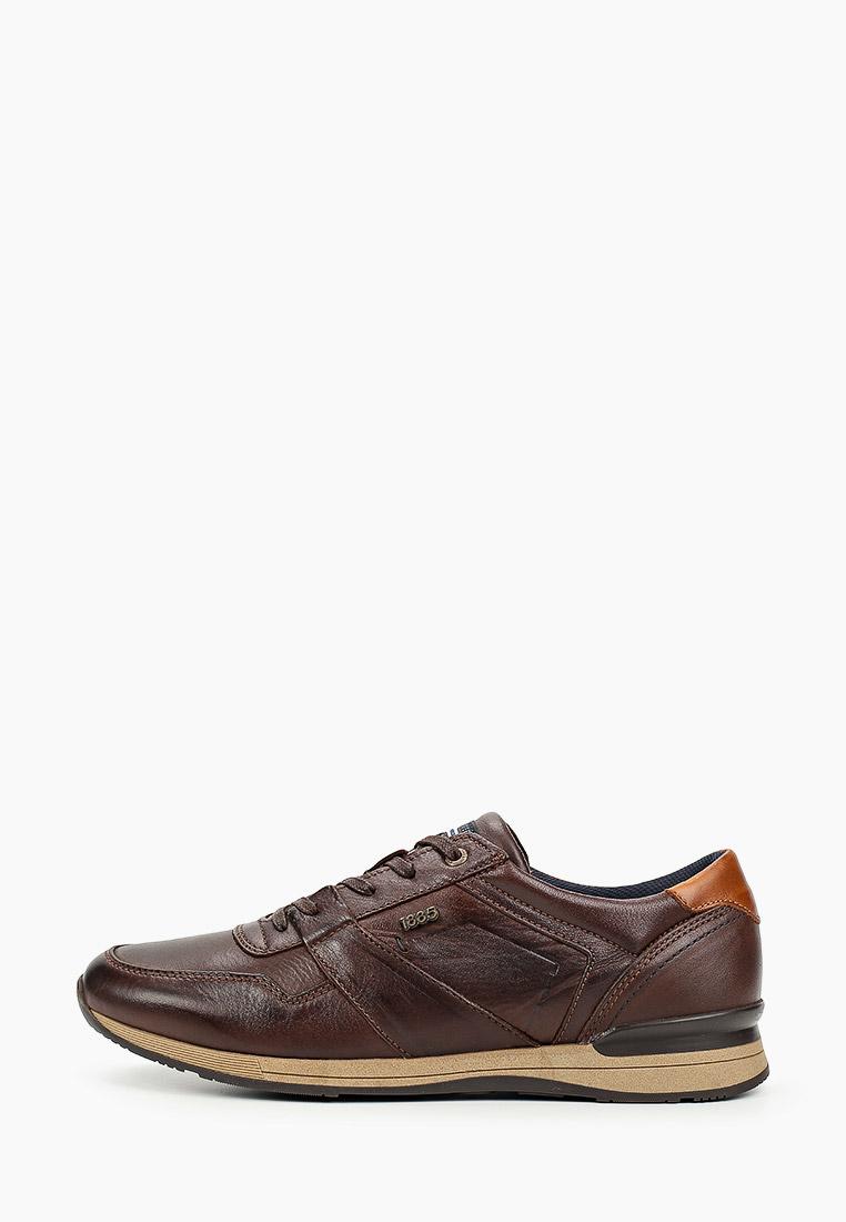 Мужские кроссовки SALAMANDER (Саламандер) 31-56204-04