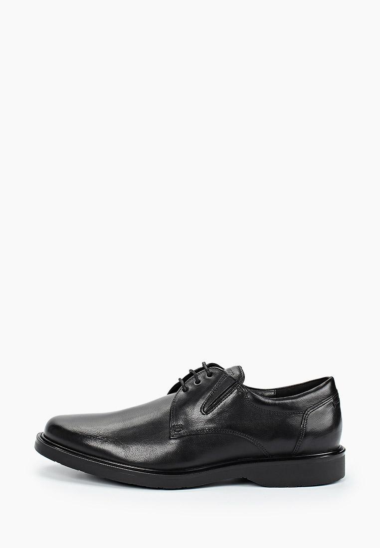 Мужские туфли SALAMANDER (Саламандер) 31-68301-01