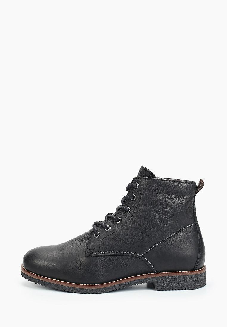 Мужские ботинки SALAMANDER (Саламандер) 31-49301-71
