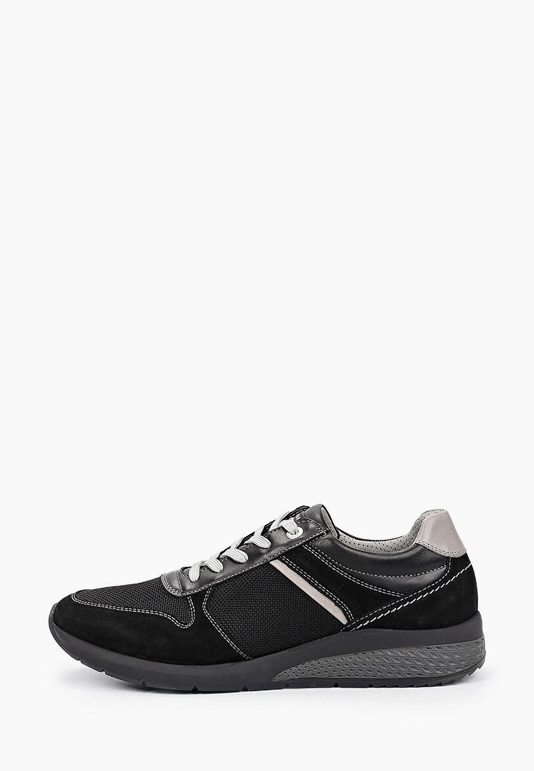 Мужские кроссовки SALAMANDER (Саламандер) 31-54804-21