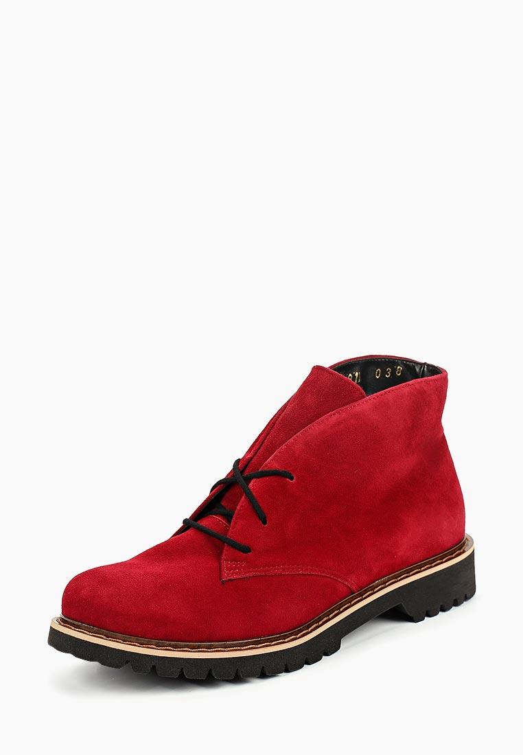 Женские ботинки Shoobootique 5491-595-vino-cipro