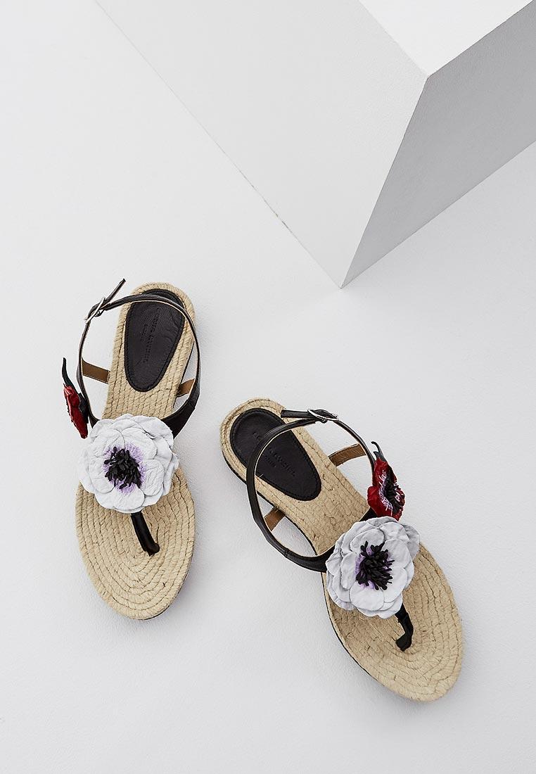 Женские сандалии Sonia Rykiel 642302-2: изображение 5