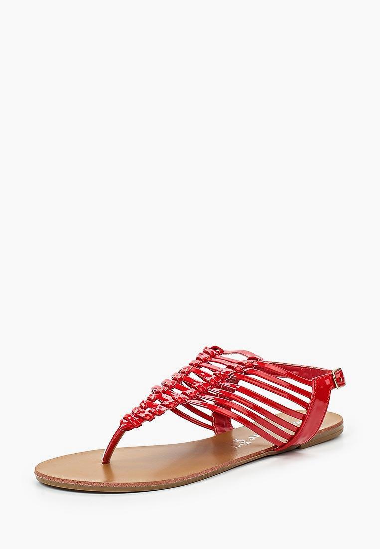 Женские сандалии Stephan P-663: изображение 1