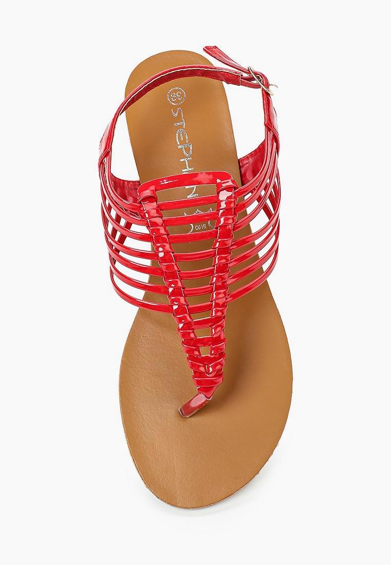 Женские сандалии Stephan P-663: изображение 4