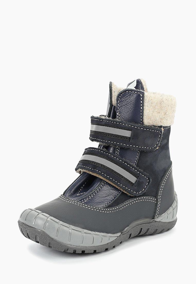 Ботинки для мальчиков TAPiBOO (Тапибу) FT-23011.18-OL08O.01