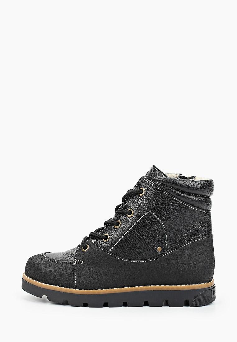 Ботинки для мальчиков TAPiBOO FT-23016.17-OL01O.01